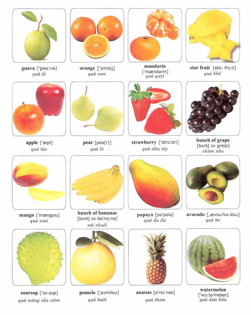 Các loại quả trong tiếng Anh